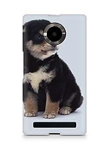 Amez designer printed 3d premium high quality back case cover for YU Yupheria (Cute black dog)