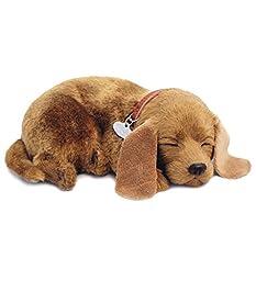Perfect Petzzz Puppy, Mutt