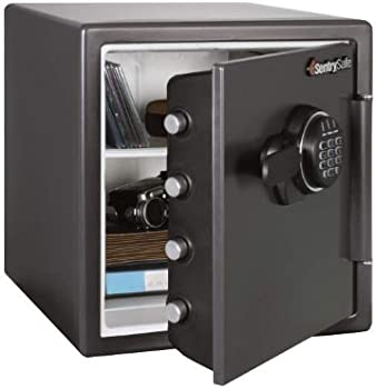 SentrySafe Electronic Fire-Safe File