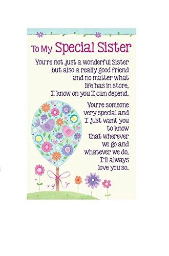 heartwarmers-to-my-special-sister-keepsake-card-envelope-35-x-2-code-k112e