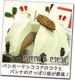 全国どこでも送料無料!! クリスマスアイスケーキ『パンナ&ココア』
