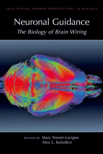 Neuronal Guidance: The Biology Of Brain Wiring (Cold Spring Harbor Perspectives In Biology)