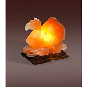 Himalayan Salt Lamps Evolution : Amazon.com: Evolution Himalayan Crystal Salt Lamp, Camel Shape (4-6 lbs): Health & Personal Care