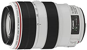 Canon EF 70-300mm 1:4-5,6 L IS USM Objektiv (67 mm Filtergewinde)