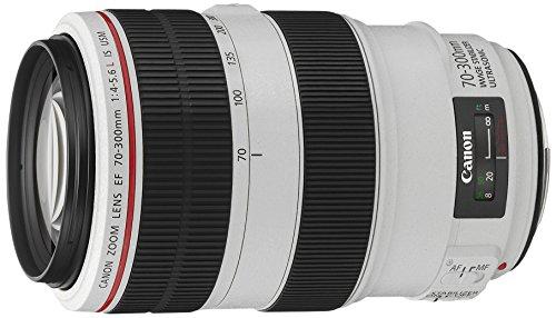 Canon 望遠ズームレンズ EF70-300mm F4-5.6L IS USM フルサイズ対応