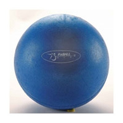 Small Squishy Exercise Ball : FitBall Mini Exercise Ball FBMINI 9