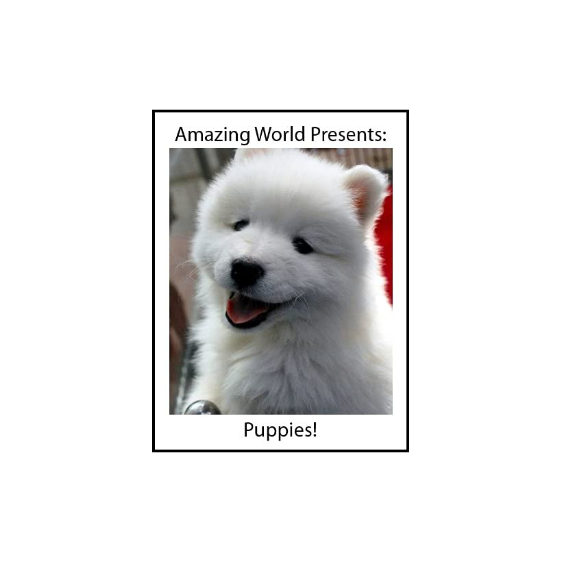 Baby Animals Puppies! (Amazing World Presents Baby Animals) [Kindle