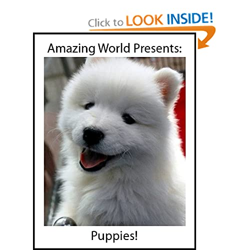 Baby Animals Puppies (Amazing World Presents Baby Animals)