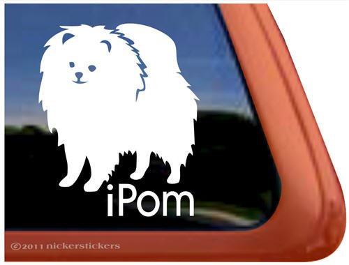 Ipom ~ Pomeranian Dog Vinyl Window Decal front-383143