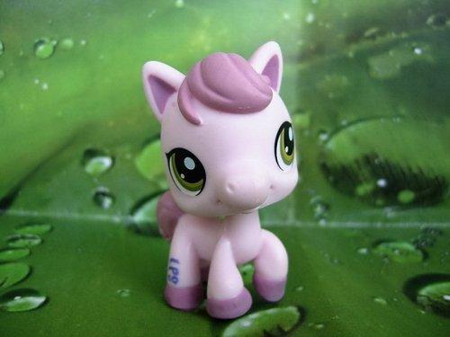 Littlest pet shop cheval especial pony disney toy story - Petshop cheval ...
