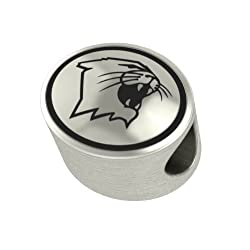 Northwestern Wildcats Collegiate Bead Fits Most Pandora Style Bracelets Including Pandora Chamilia Biagi Zable Troll and More. High Quality Bead in Stock for Immediate Shipping