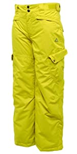Dare2b Stomp it Out Boys Girls Childrens Kids Waterproof and Breathable Trouser Ski and Snowboarding Salopettes (Dark Tang, 3-4 Years)