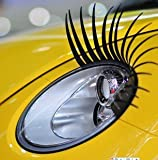 PAIR OF CURLY SEXY EYELASHES FOR CARS FITS ALL MAKES