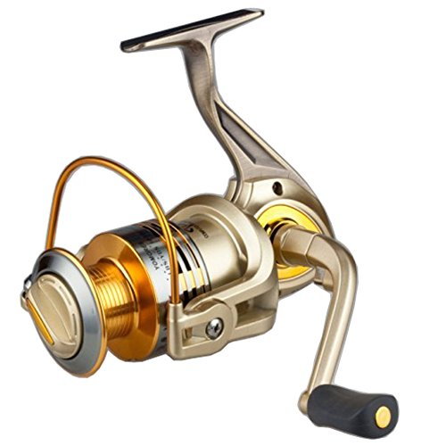 Supertrip TM Double Bearing System Saltwater Spinning Fishing Reels Aluminum Foot and Metal Rocker Champagne and Gold Left/Right