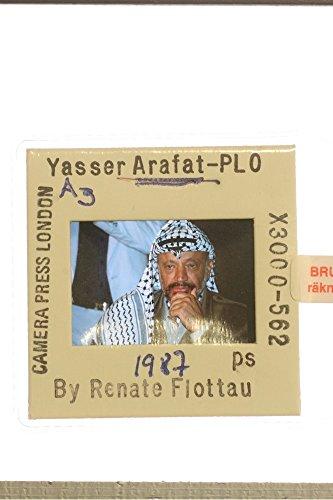 slides-photo-of-yasser-arafat-chairman-of-the-palestine-liberation-organization
