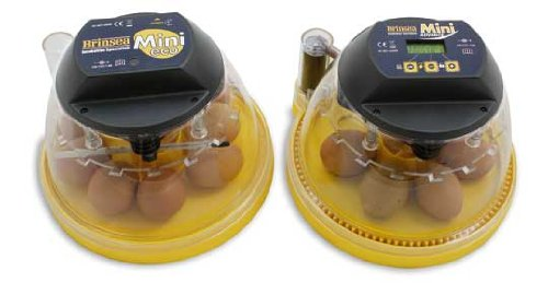 NEW Brinsea Advance Autoturn Mini Incubator: 10 Egg