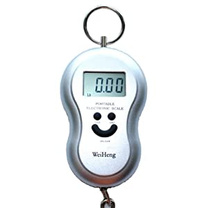 Click to read our review of Luggage Scales: Silver Digital Luggage Scale!