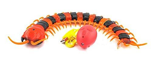 elektronische-fernbedienung-simulation-kreative-tausendfussler-spielzeug-elektrische-jungtiere-ein-f