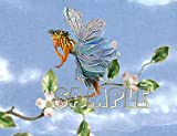 FLIGHT Fantasy Fairy Cross Stitch Chart