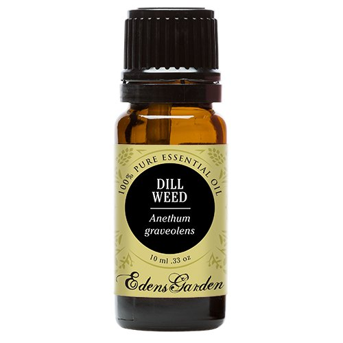 Dill Weed 100% Pure Therapeutic Grade Essential Oil by Edens Garden- 10 ml
