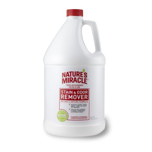natures-miracle-stain-odor-remover-gallon-512504