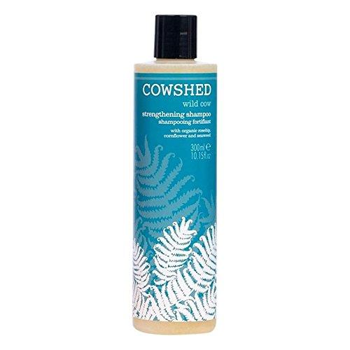 Cowshed Selvaggio Mucca Shampoo Rafforzamento 300ml (Confezione da 2)