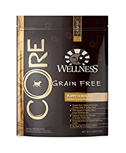 Wellness CORE Natural Grain Free Dry Dog Food, Puppy Formula Chicken & Turkey Recipe, 4-Pound Bag