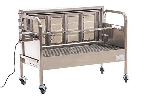 grillmotor f r spanferkel was. Black Bedroom Furniture Sets. Home Design Ideas
