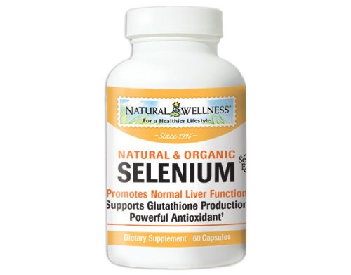 Natural Wellness Selenium - Selenoexcel - 60 Capsules