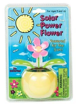 Solar Powered Flower Pot & Plant