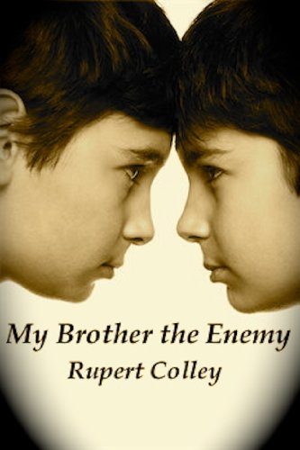 My Brother the Enemy ebook