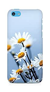 Amez designer printed 3d premium high quality back case cover for Apple iPhone 5C (daisy flowers)