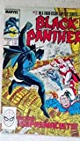 img - for Black Panther in
