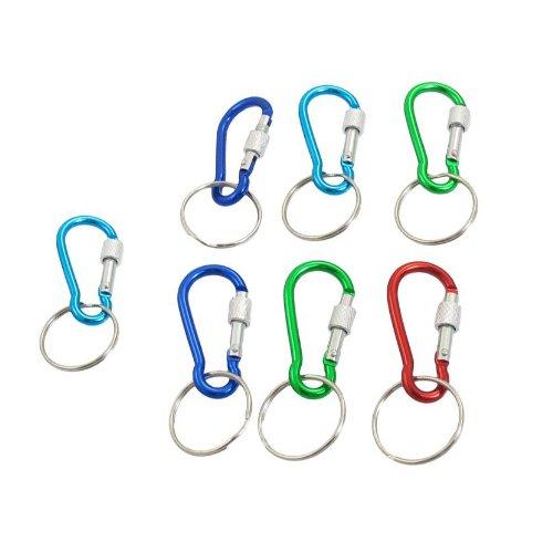 Carabiner Keychains