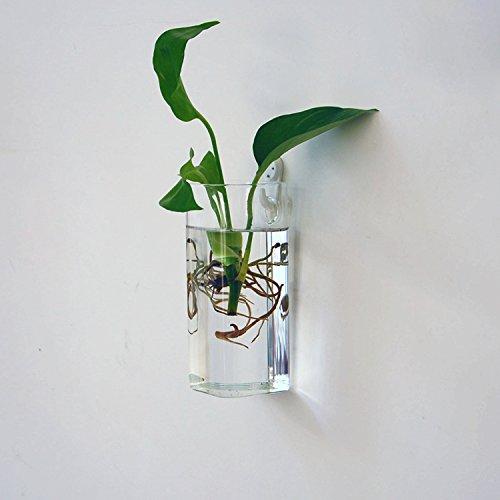 vase en verre bouteille rectangle suspendu pour fleur hydroponique d coration pour maison. Black Bedroom Furniture Sets. Home Design Ideas