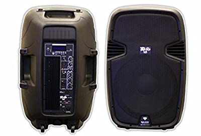 DS18 2-Way Powered/Active Speaker Box with BT, FM, USB, SD, EQ, MP3, Mic, and Wheels