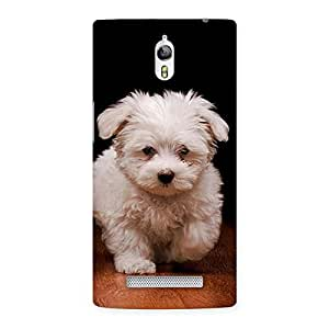 Enticing Cute Walking Dog Back Case Cover for Oppo Find 7