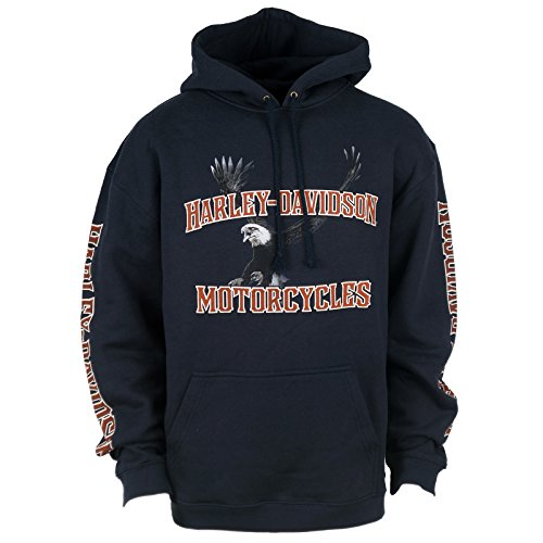 H-D Overseas Tour Ghosted Eagle Hooded Sweatshirt Men'S, X-Large, Navy