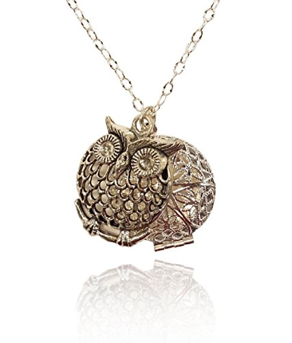 Aromatherapy-Necklace-Essential-Oil-Diffuser-Locket-Pendant-Jewelry-Silver-tone-Filigree-Owl-Charm-wreusable-felt-pads