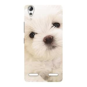 Special Cute Pup White Back Case Cover for Lenovo A6000 Plus