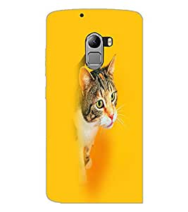 PrintDhaba Cat D-2662 Back Case Cover for LENOVO K4 NOTE A7010 (Multi-Coloured)