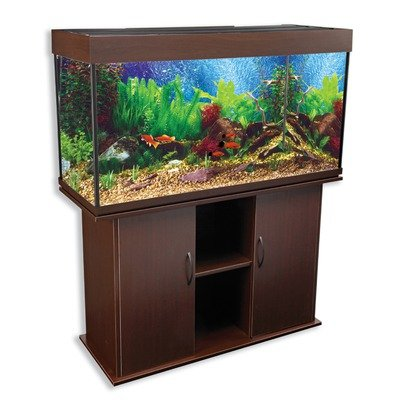 Best fish tank aquariums for home 2015 for Rectangle fish tank