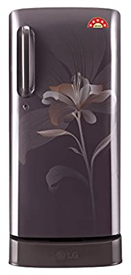 LG GL-D221AGLN.DGLZEBN Direct-cool Single-door Refrigerator (215 Ltrs, 5 Star Rating, Graphite Lily)