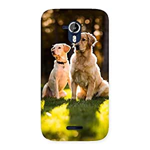 Delighted Do Kutte Back Case Cover for Micromax Canvas Magnus A117