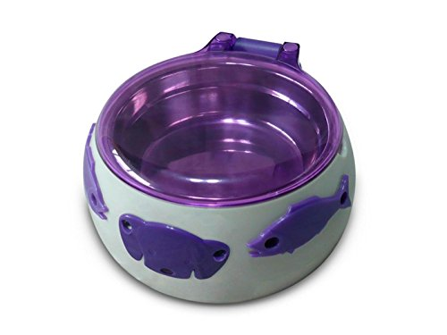 mangiatoia-automatica-per-cani-magic-dog-box