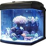 JBJ 28 Gallon Nano Cube LED Aquarium – 27 Watt Intermediate