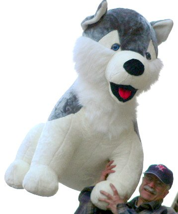MASSIVE STUFFED HUSKY DOG - MORE THAN 4-FEET TALL & 3-FEET WIDE & 3-FEET DEEP - BIG PLUSH FUN * AMERICAN MADE IN THE USA AMERICA