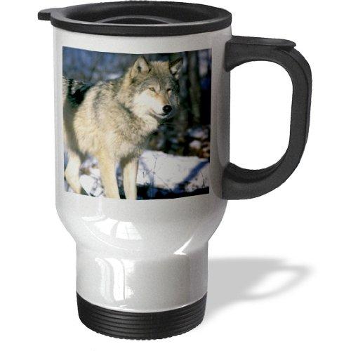 Wolf Microwave