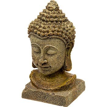 blue-ribbon-thai-buddha-kopf-gross