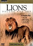 Lions - Deluxe Box Set